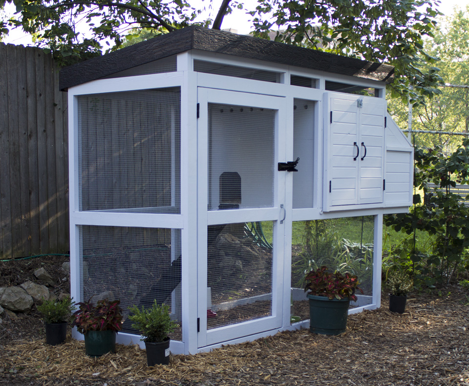 Chicken coop for Homemade chicken house